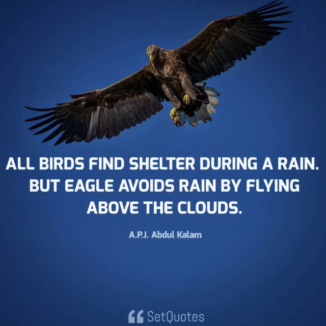 All birds find shelter during a rain. But eagle avoids rain by flying above the clouds - APJ Abdul Kalam Quotes