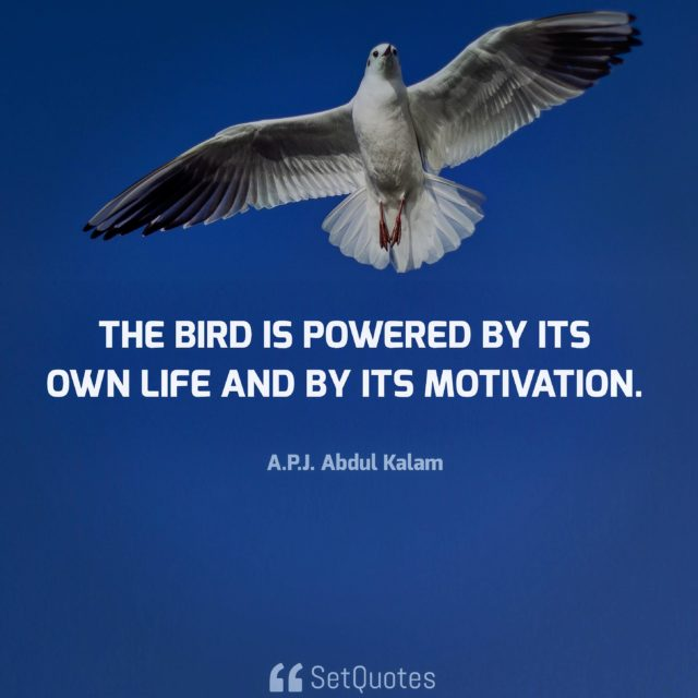 The bird is powered by its own life and by its motivation. - A.P.J. Abdul Kalam Quotes