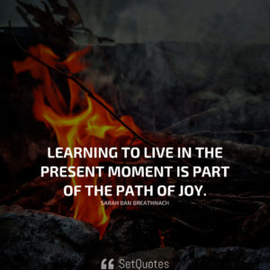 Learning to live in the present moment is part of the path of joy. - Sarah Ban Breathnach